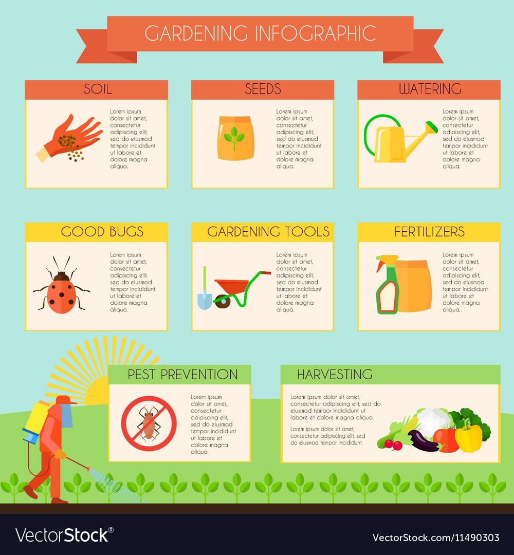 Gardening Infographic Set vector image