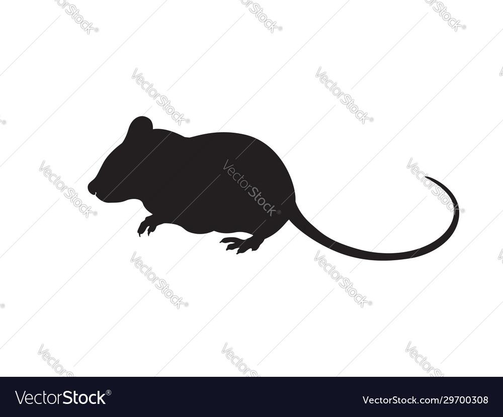 Mouse silhouette icon design