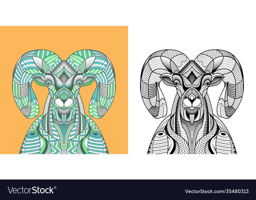 Coloring book big horn sheep head