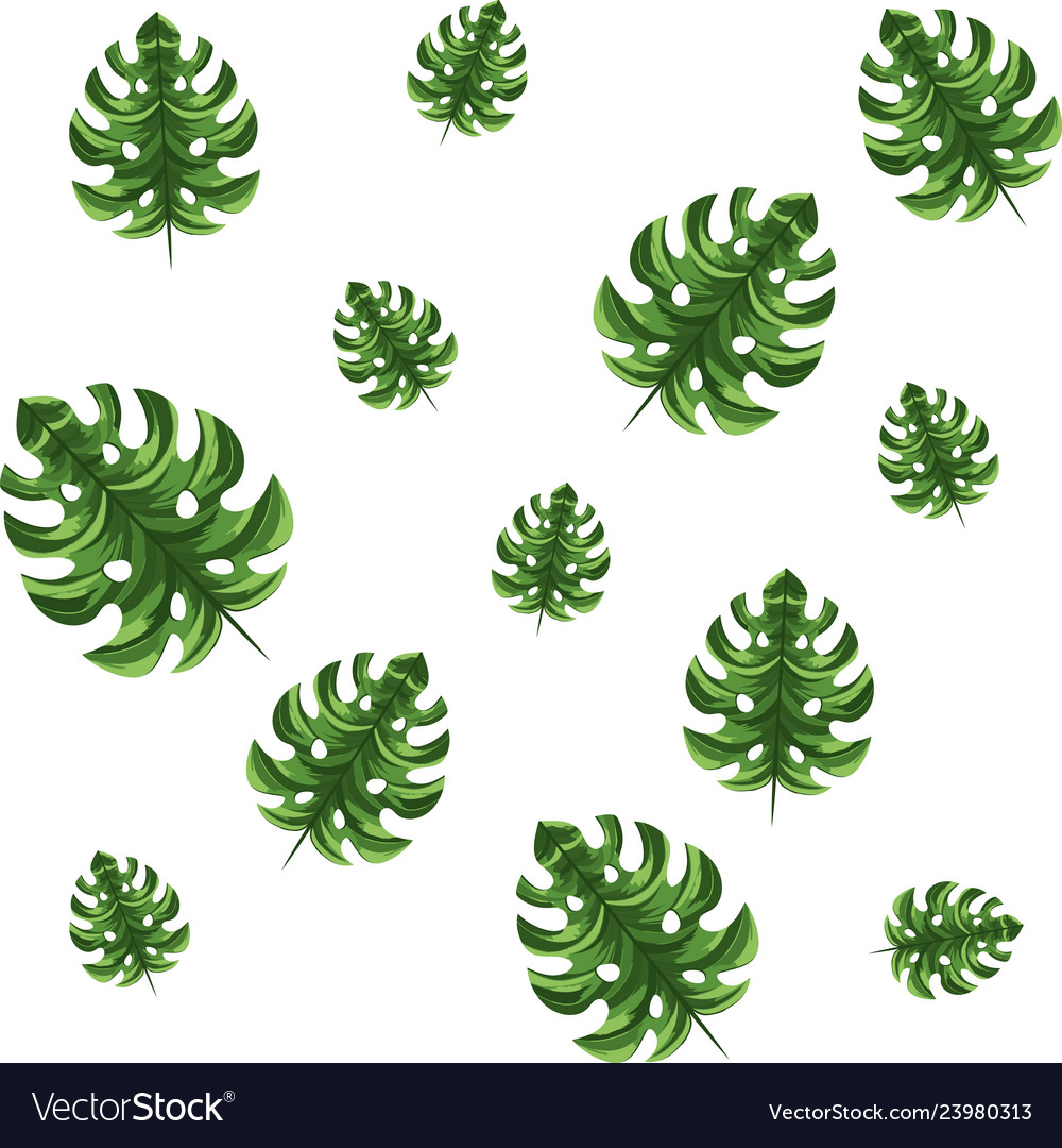 Nature Leafs Cartoon Royalty Free Vector Image