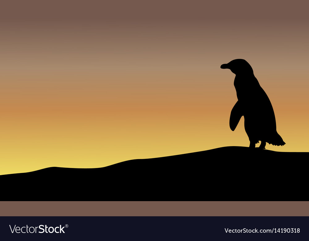 Beauty landscape with penguin silhouettes