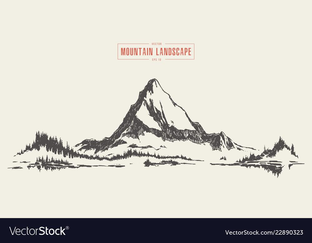 A mountain peak fir forest lake drawn