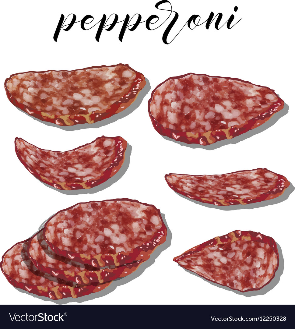 Pepperoni with slices on a colourful background vector image