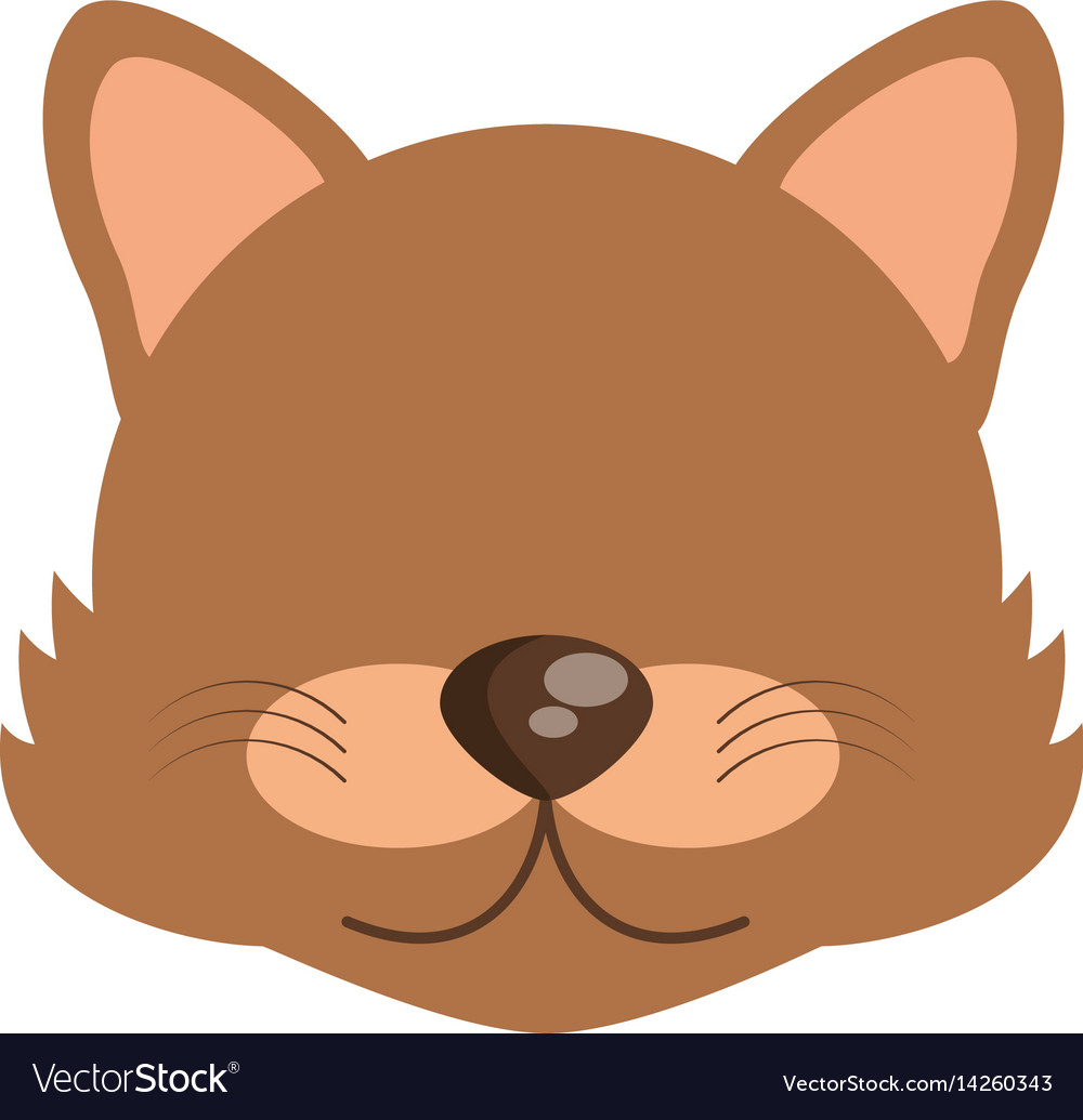 Head cute wolf animal image vector image