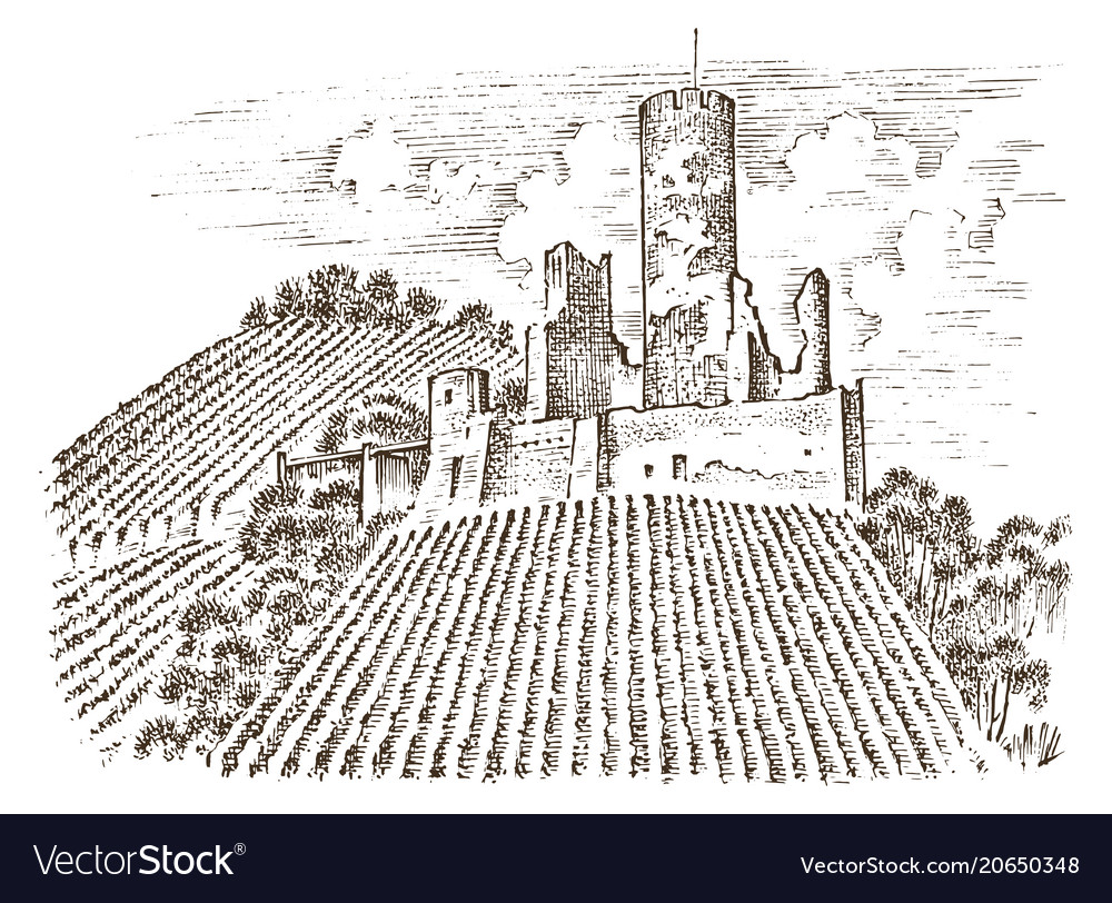 Castle on a hill ancient landscape for the label