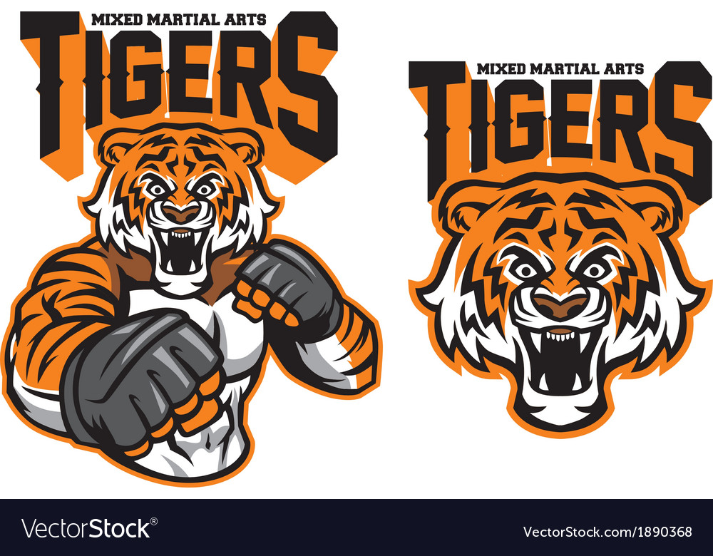 MMA fighter tiger vector image