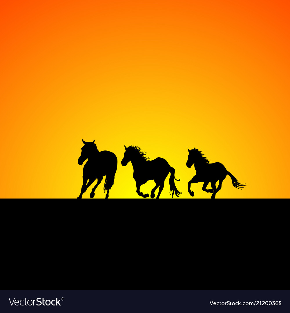 Silhouette of three horses galloping at sunrise