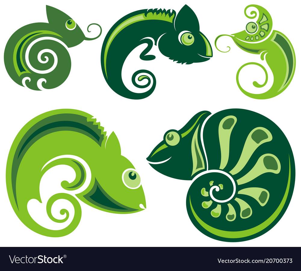 Chameleon icons vector image