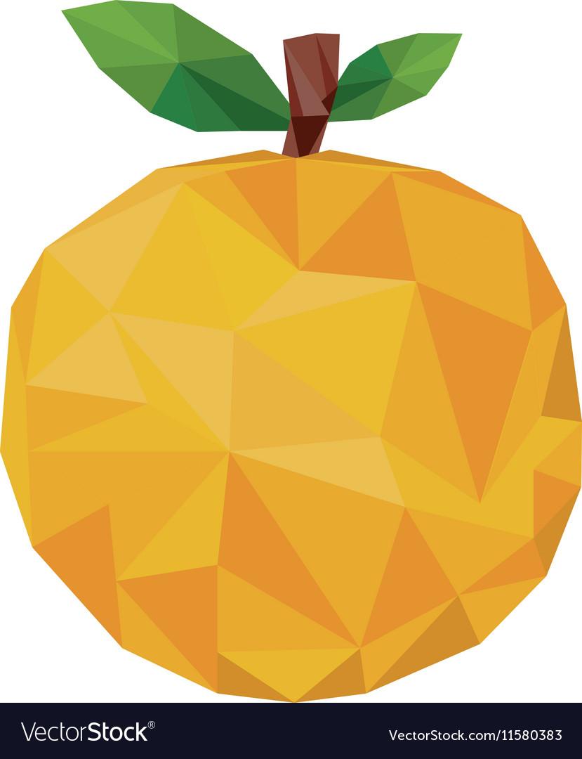 Abstract Orange Fruit Icon