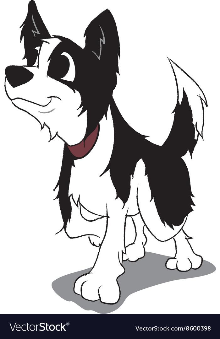 Border collie cartoon vector image