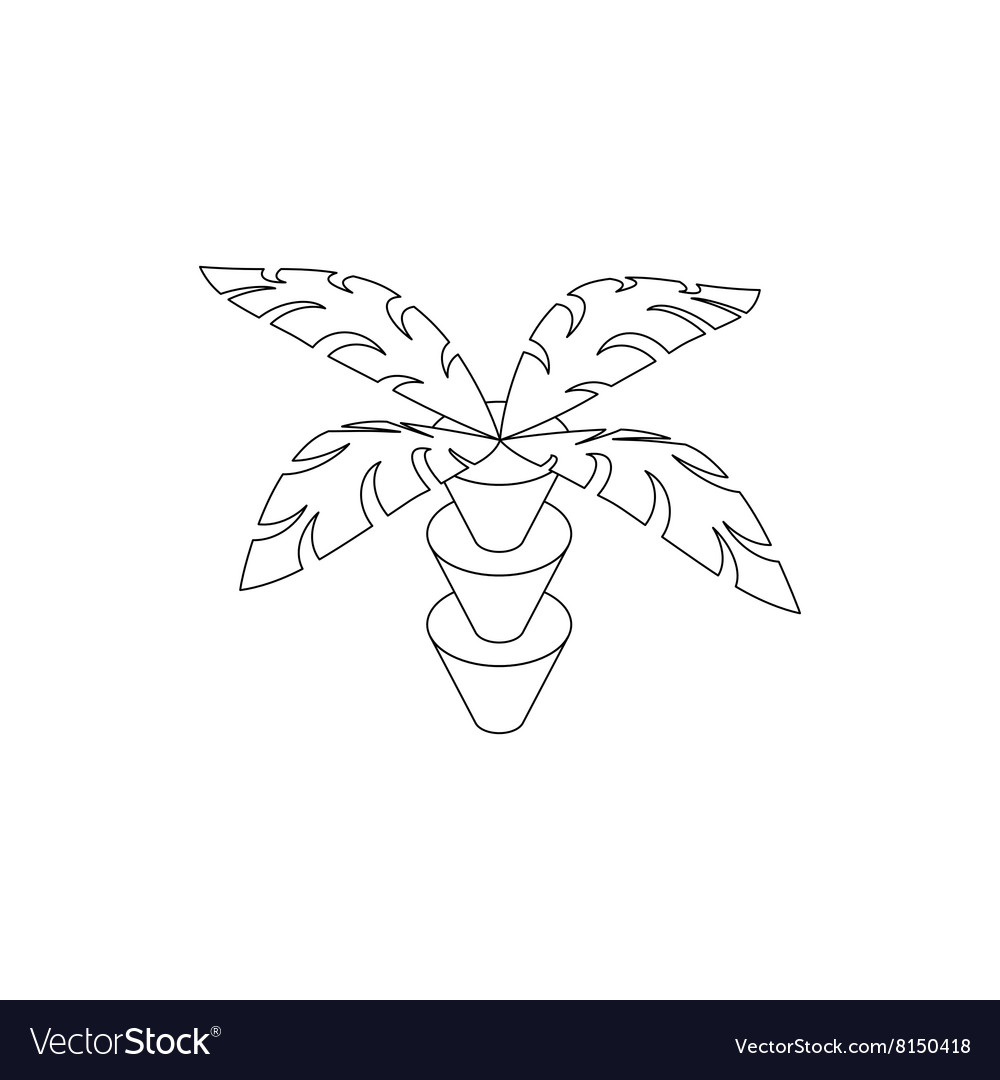 Coconut palm tree icon isometric 3d style