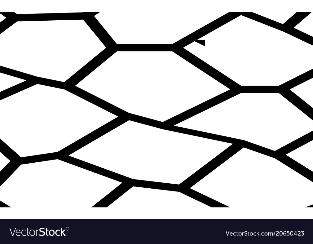 black and white irregular mosaic template vector image