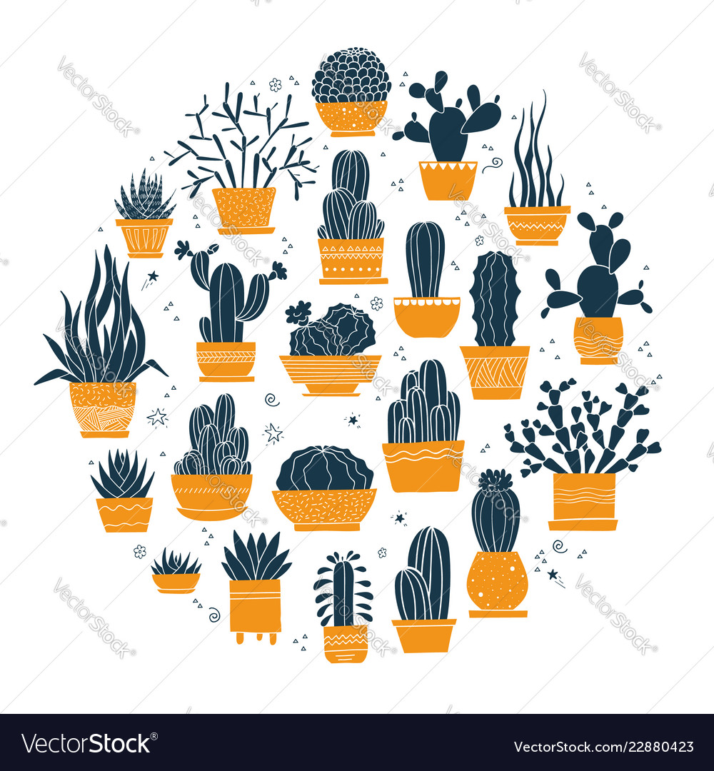 Collection hand-drawn cacti and succulents in