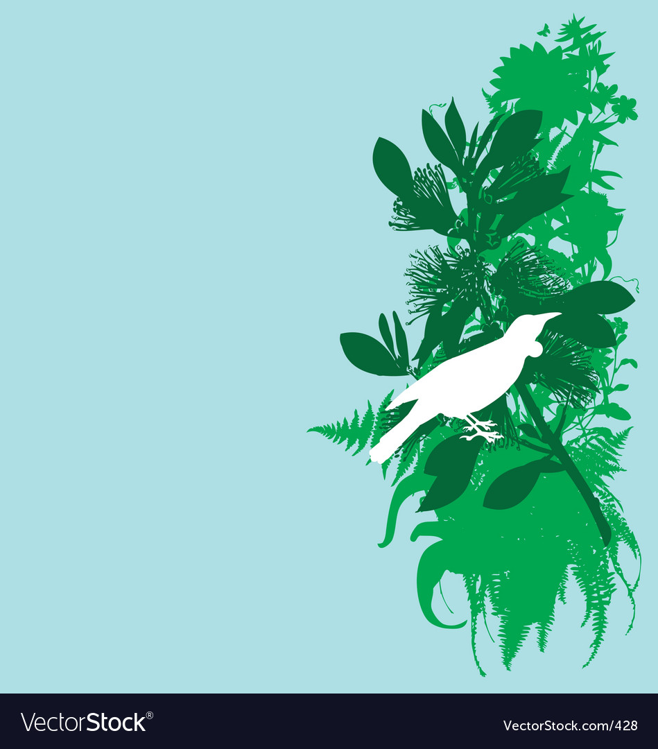 Tui and pohutukawa vector image