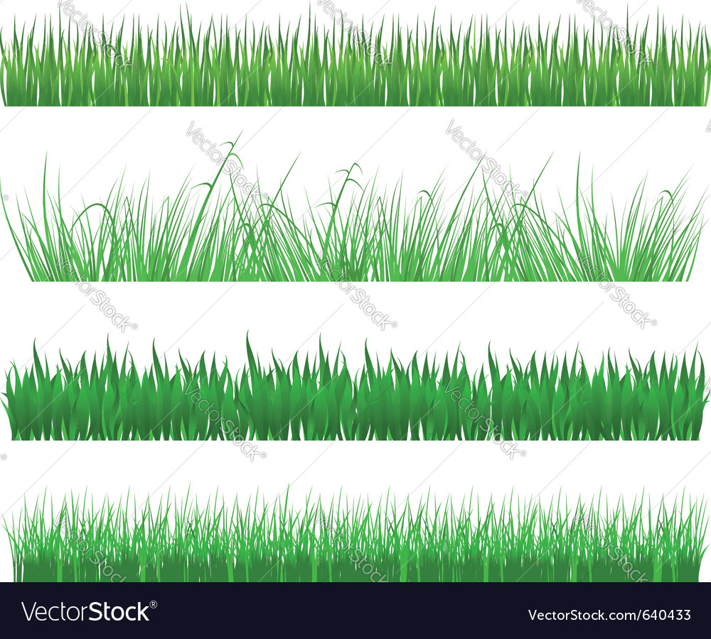 Green grass and field patterns