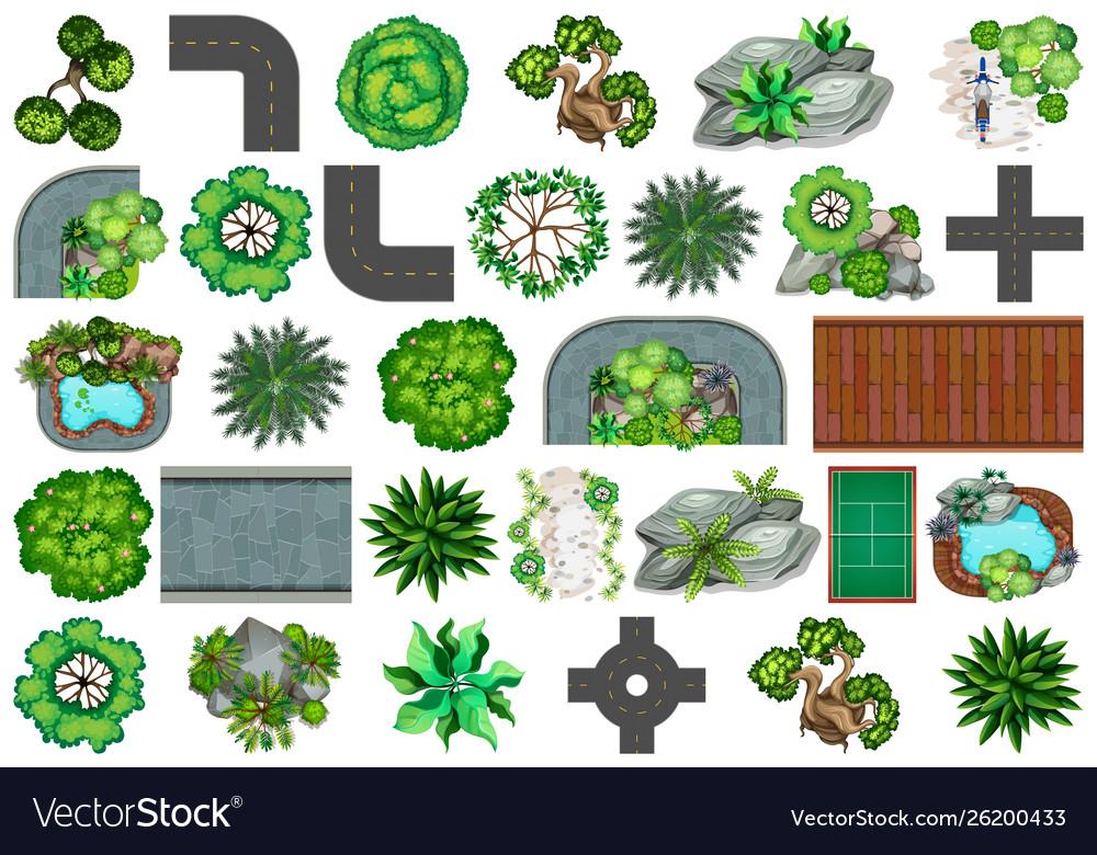Set plant for decoration
