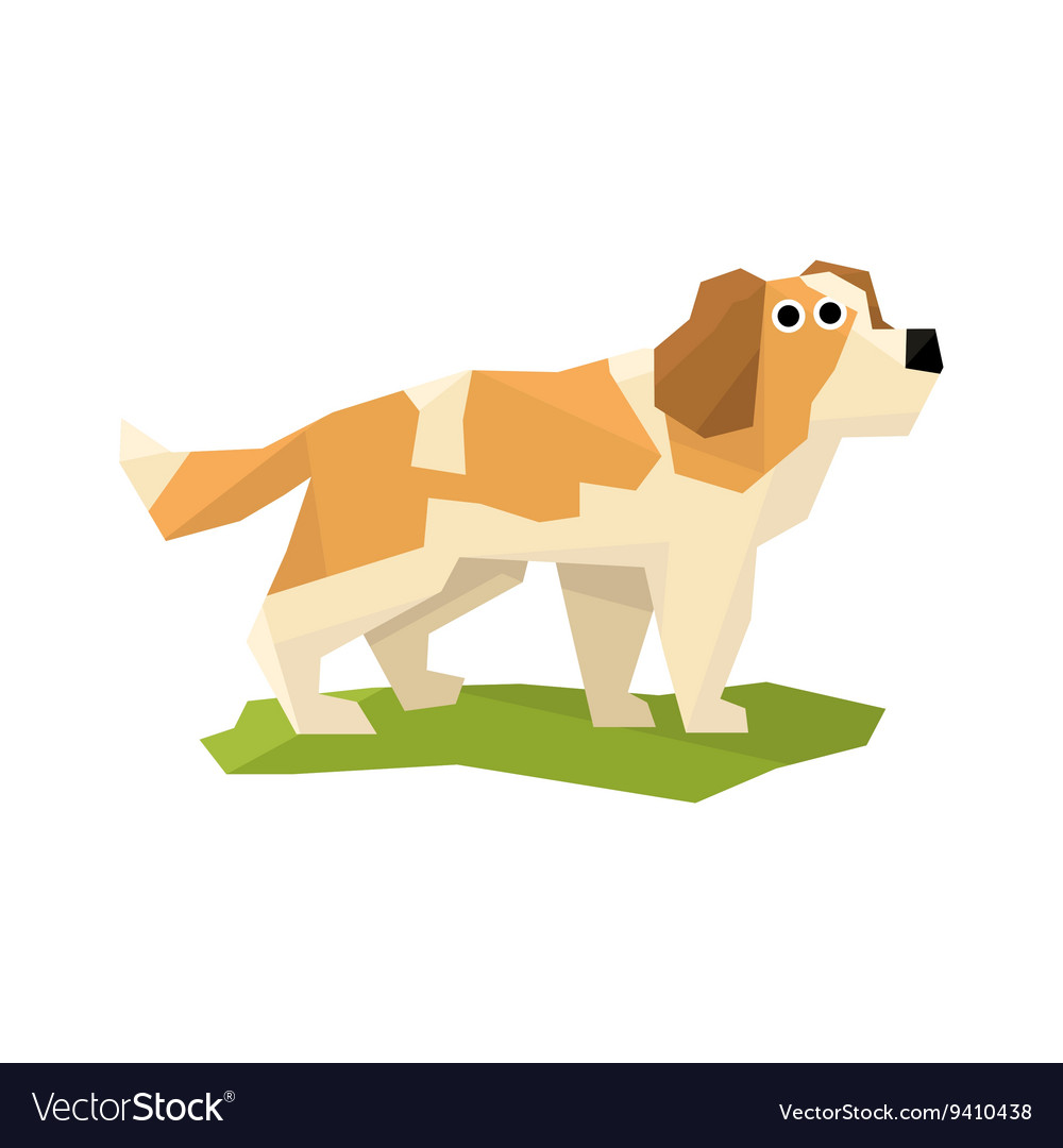 St Bernard Rescue Dog