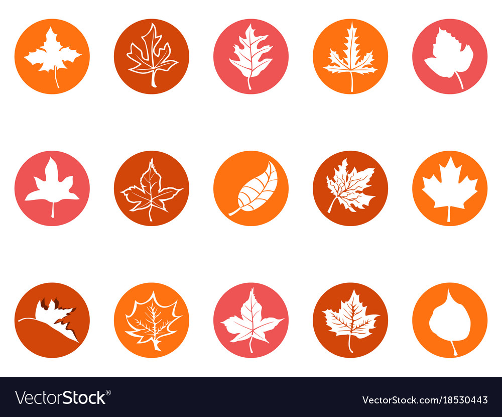 Maple leaf round button icons