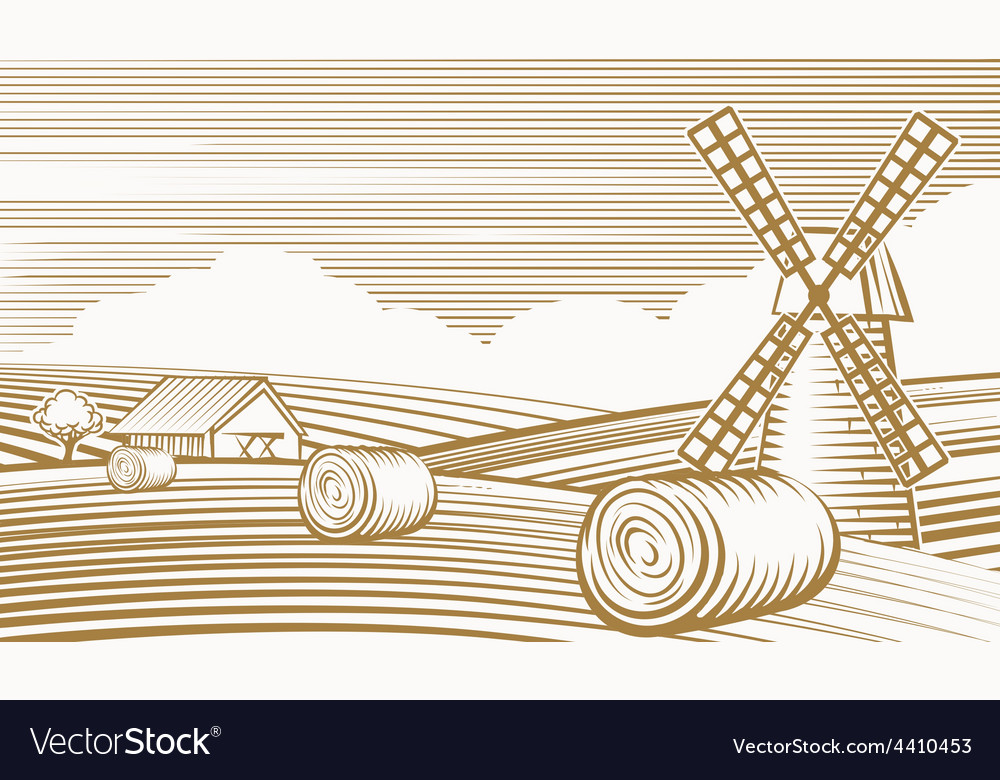 Agriculture landscape with mill and barn vector image