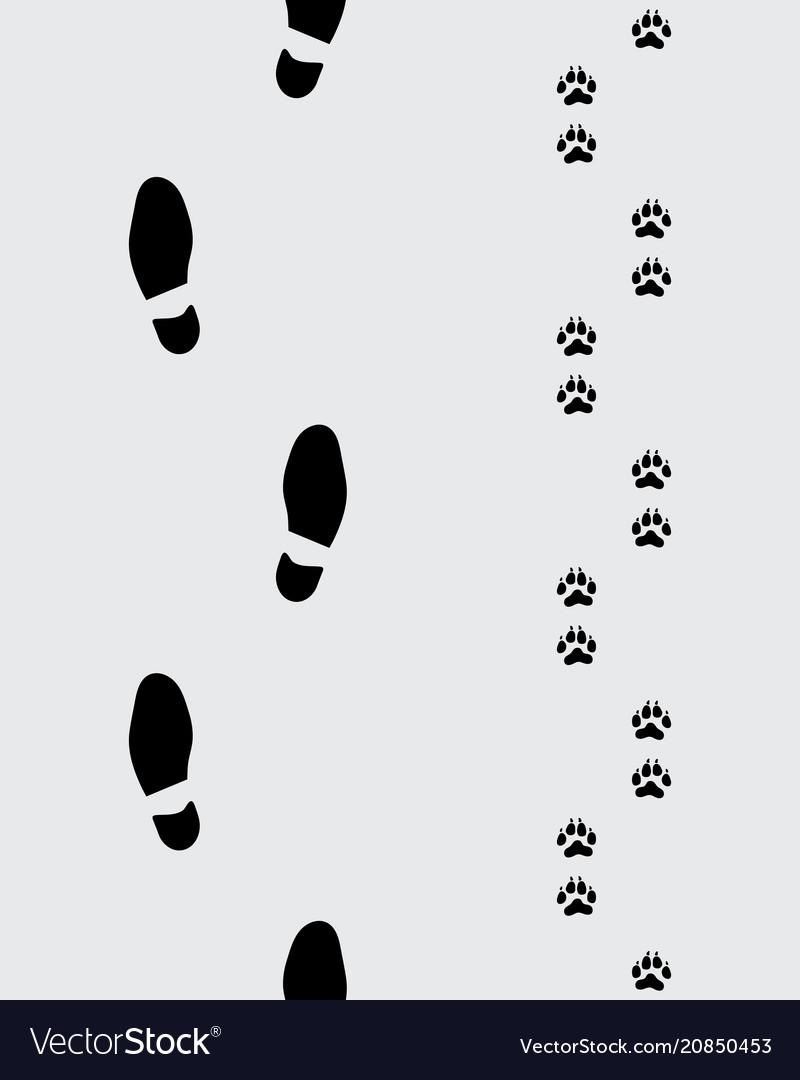 Footprints of man and dog
