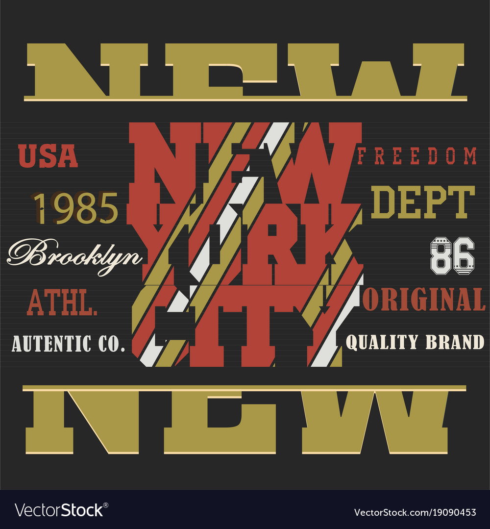 Typography sport new york vector image