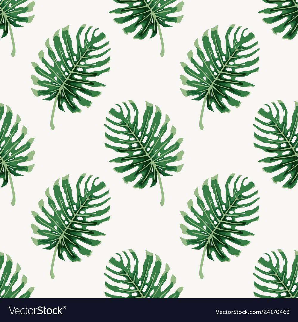 Monstera deliciousa tropical leaf seamless