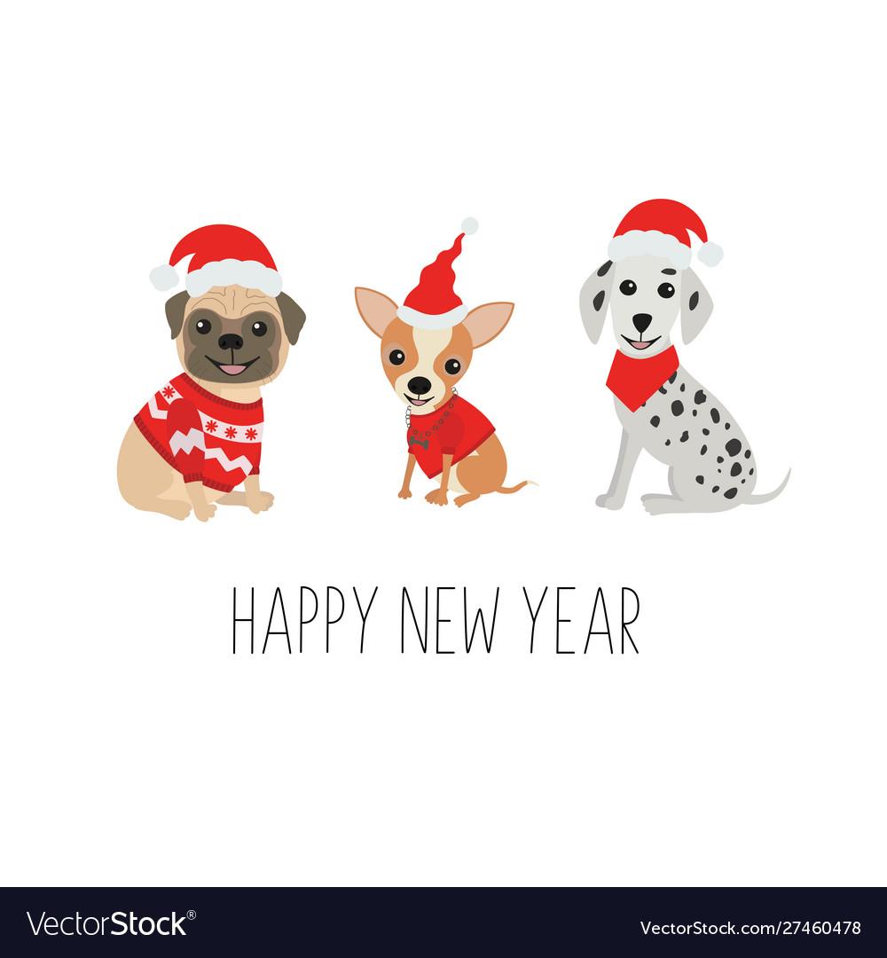 Happy new year greeting card cute dogs in funny