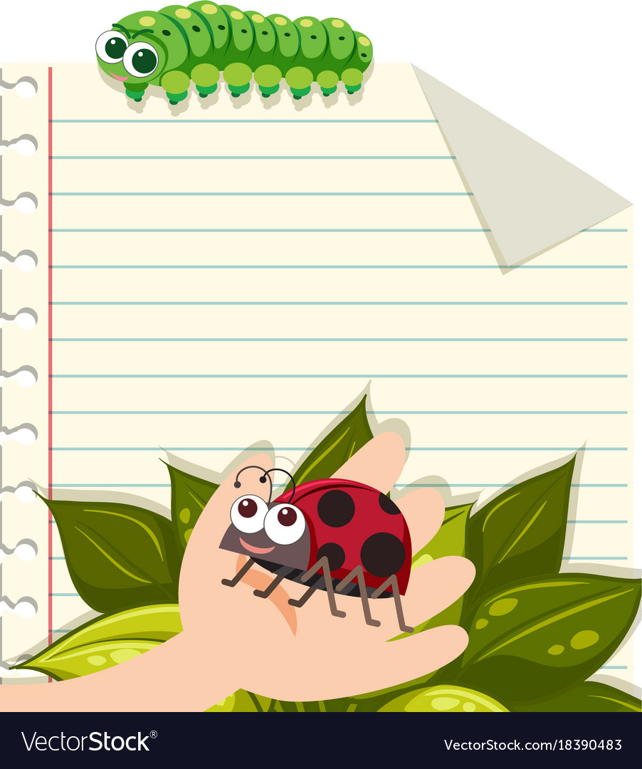 line paper template with ladybug and caterpillar vector image