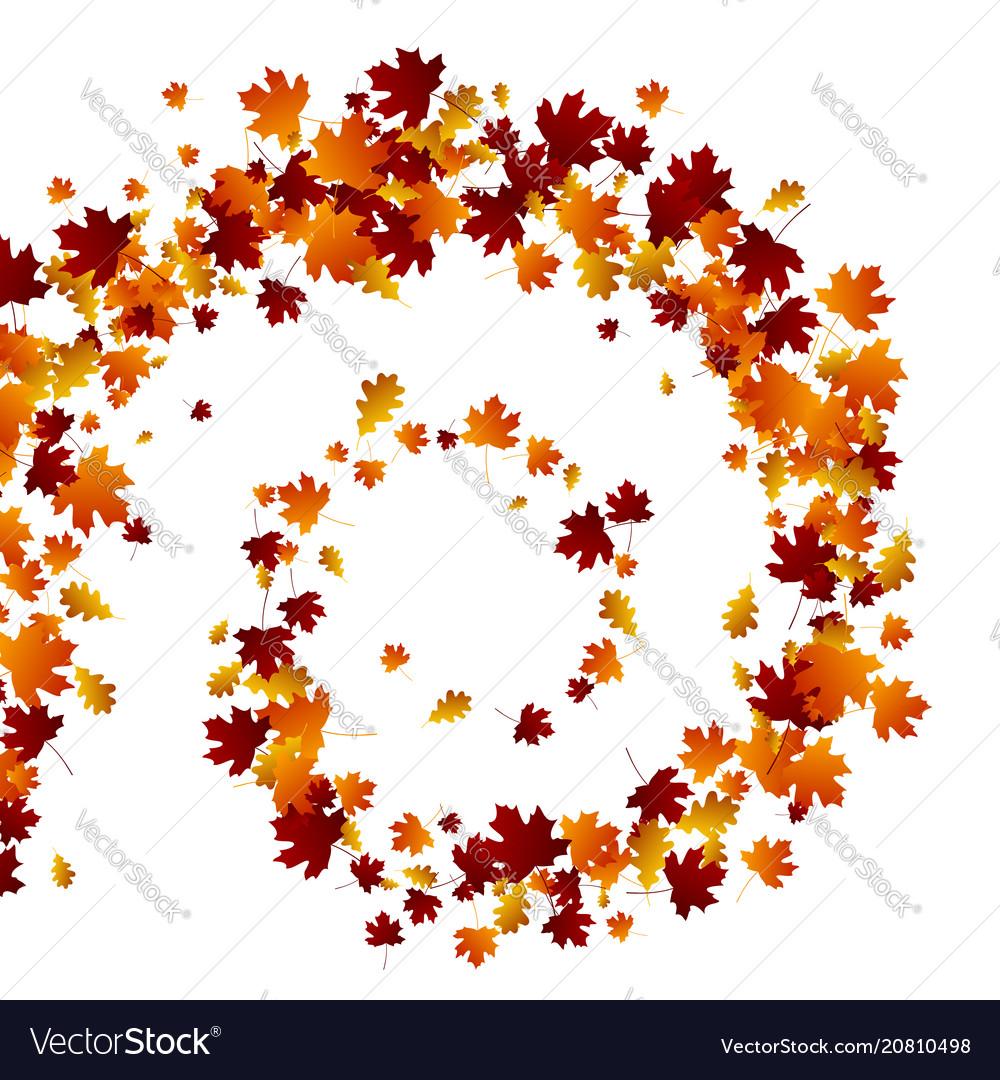 Autumn swirl leaves