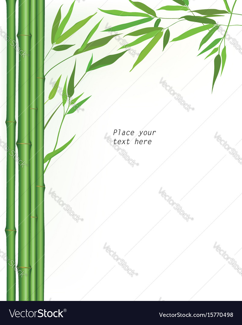 Floral background summer outdoor wallpaper nature Vector Image