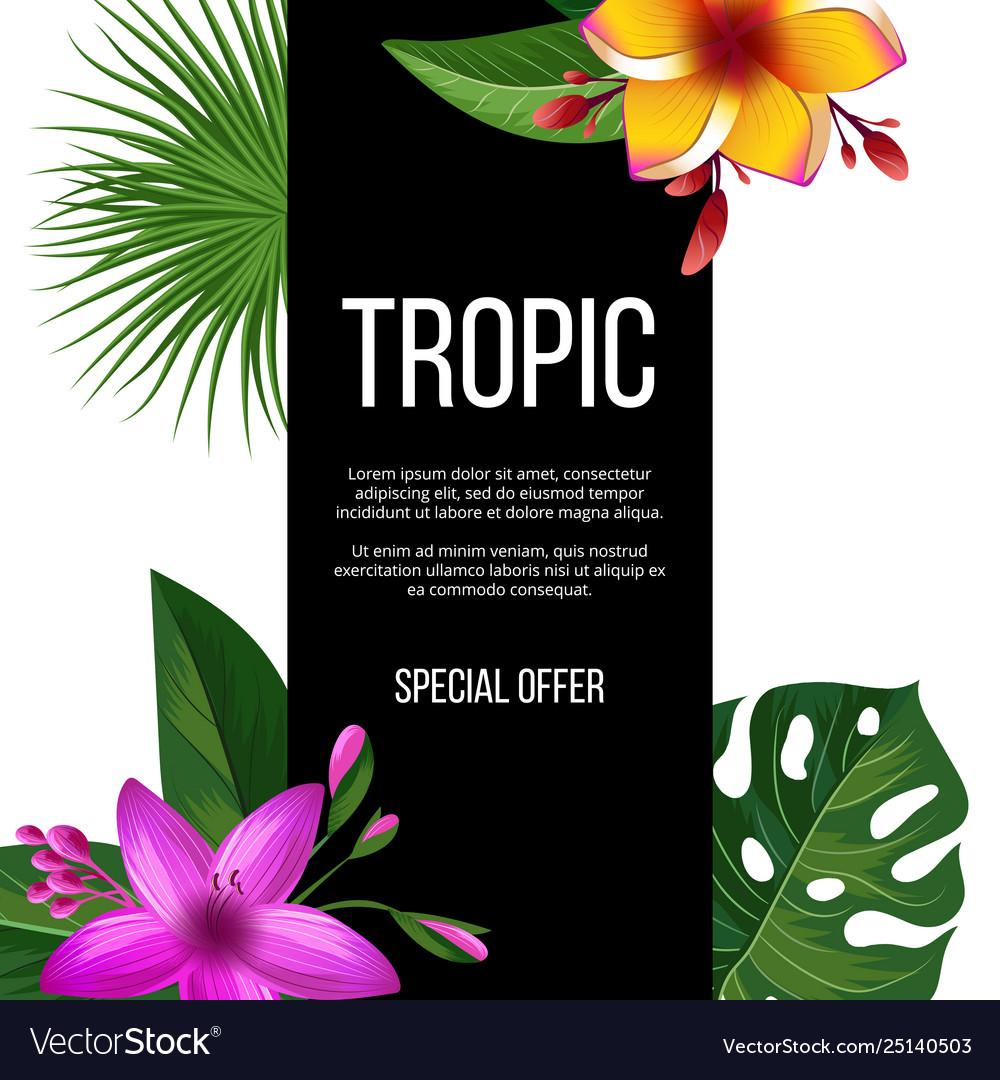 Exotic flowers sale banner tropical plants
