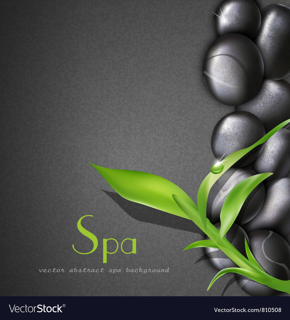 Background of a spa with stones vector image