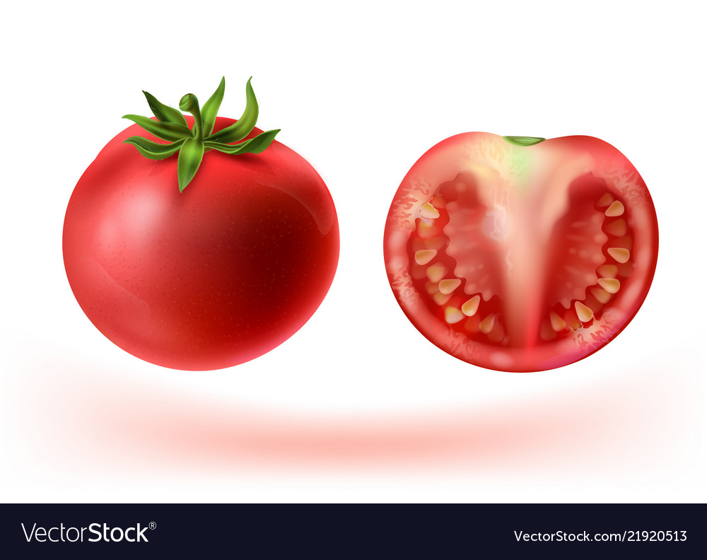 3d realistic set of red tomatoes