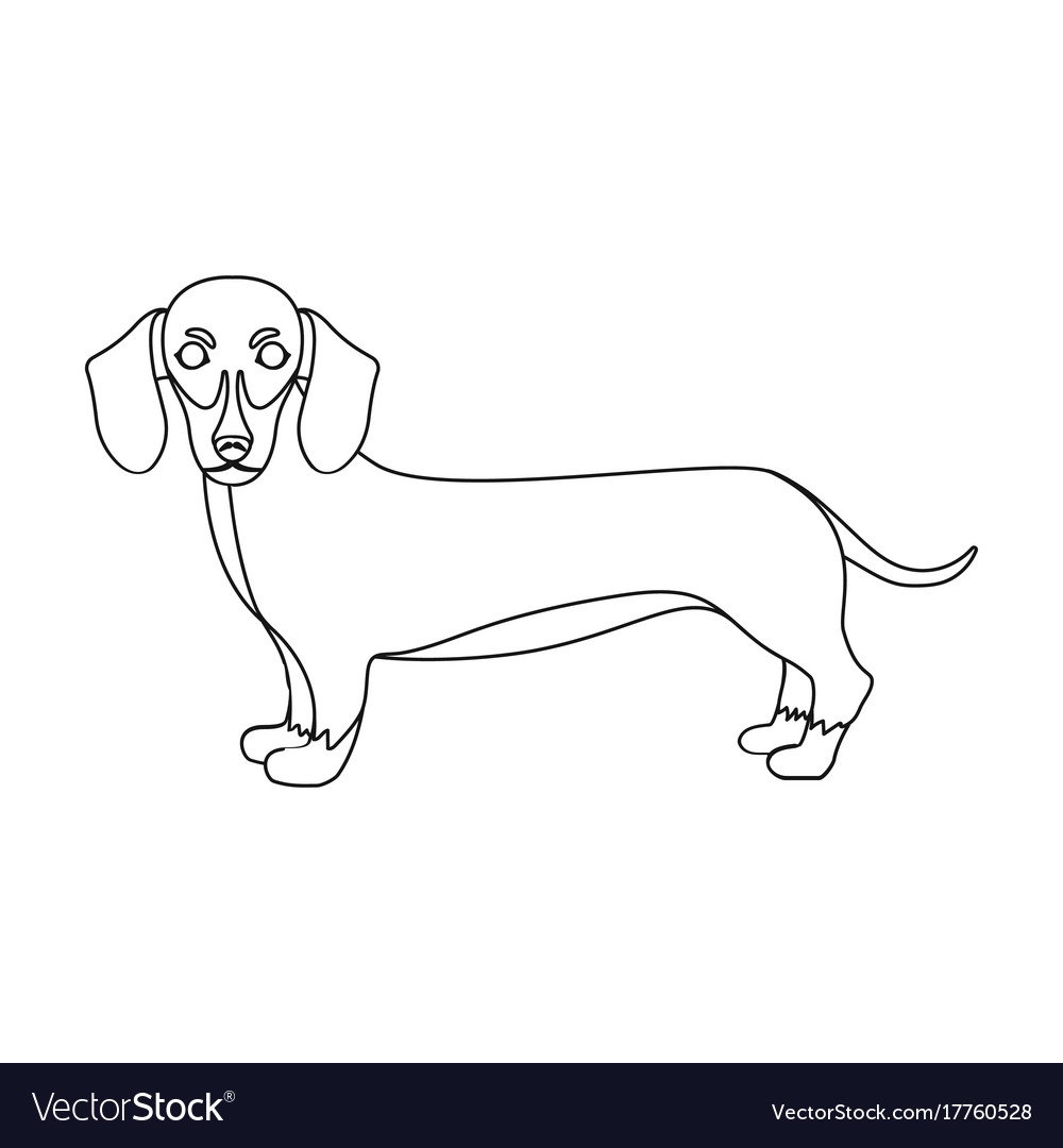 Dachshund single icon in outline styledachshund