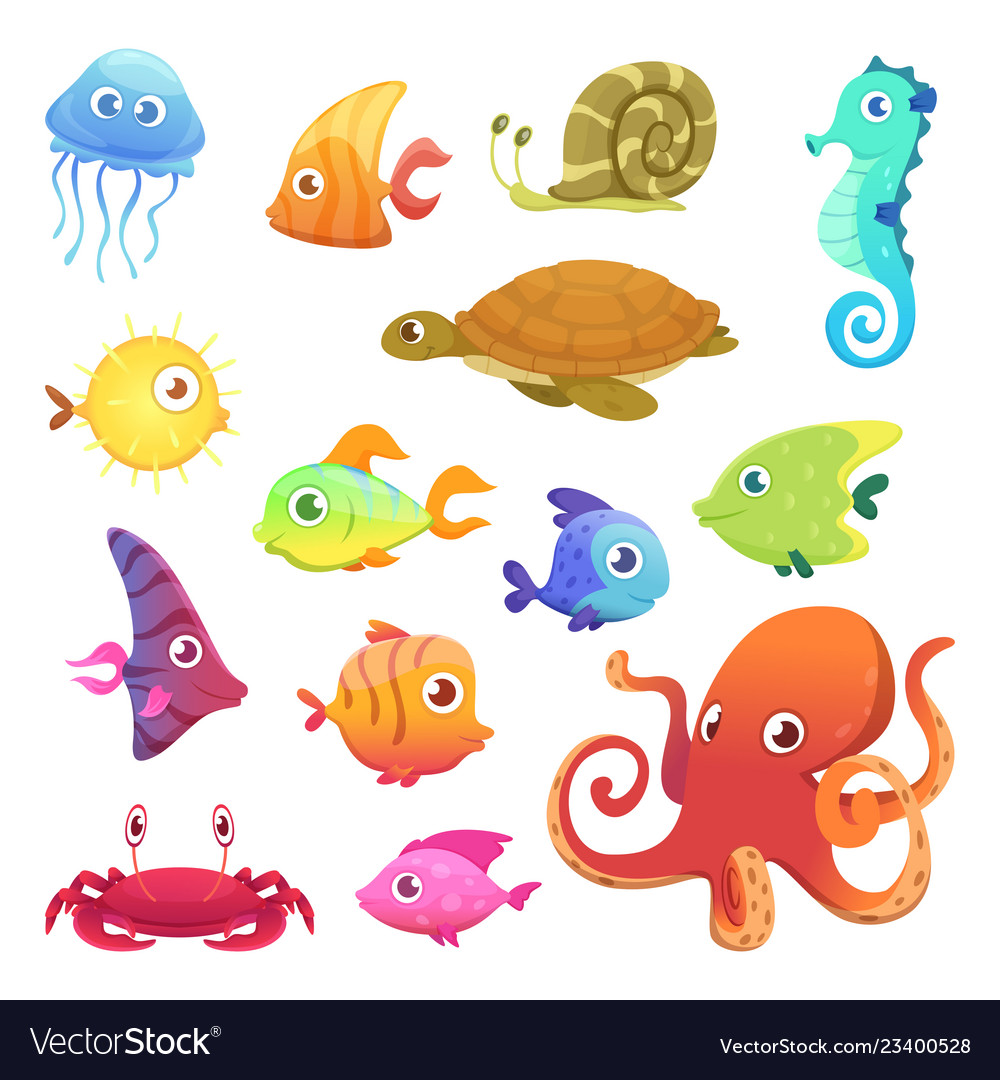 Underwater animals ocean sea animals fish octopus