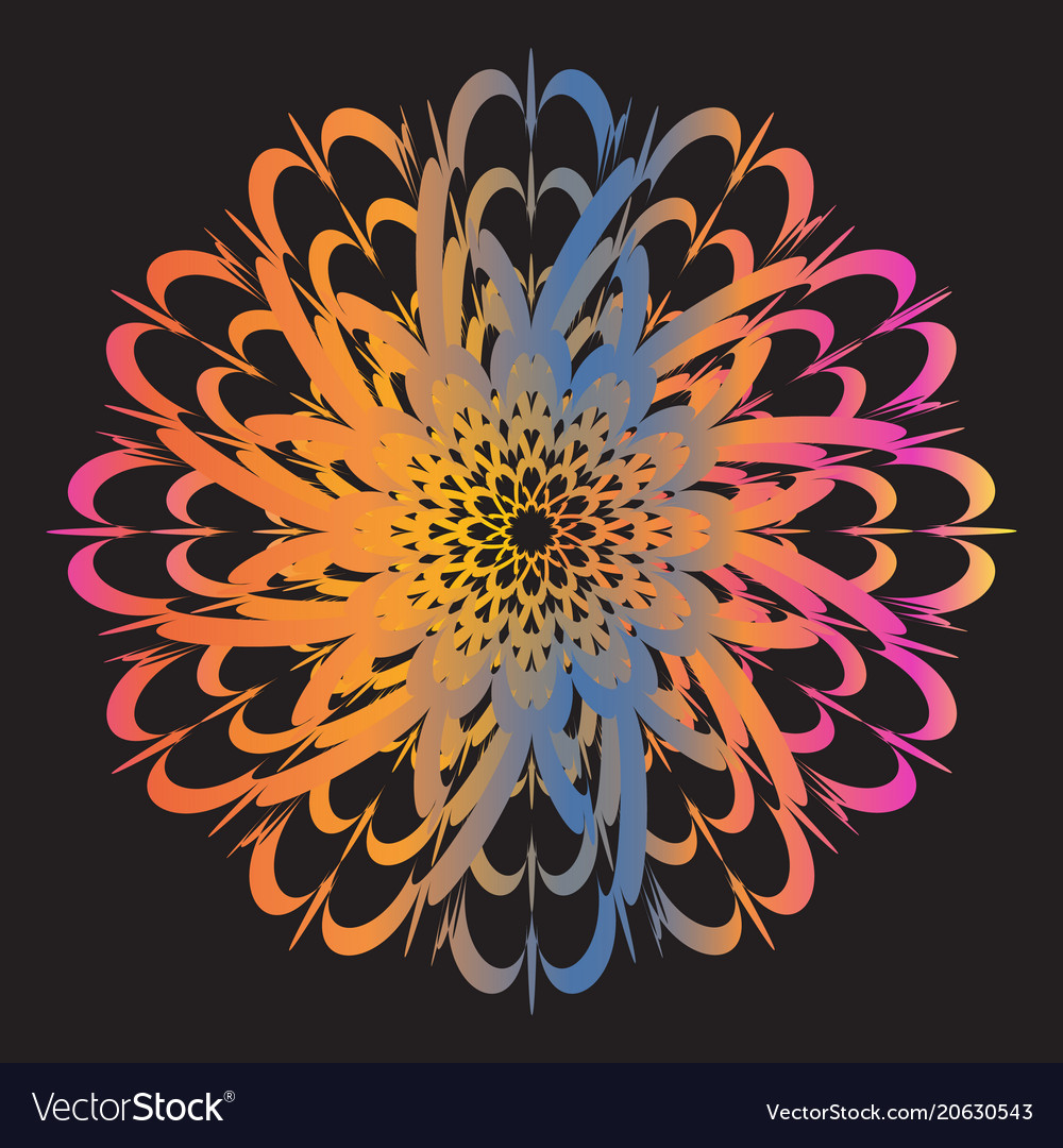 Ethnic floral colorful tribal circle mandala