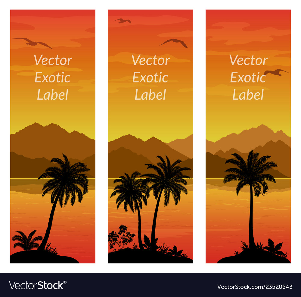 Labels with palms