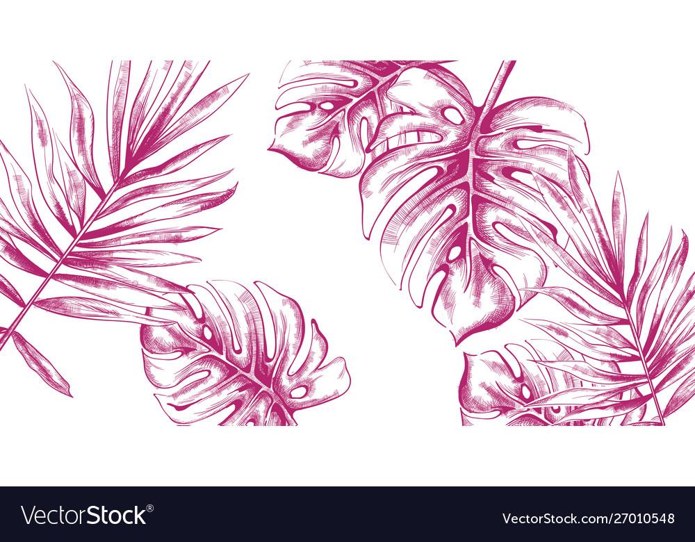 Palm leaves tropic fsummer background line art