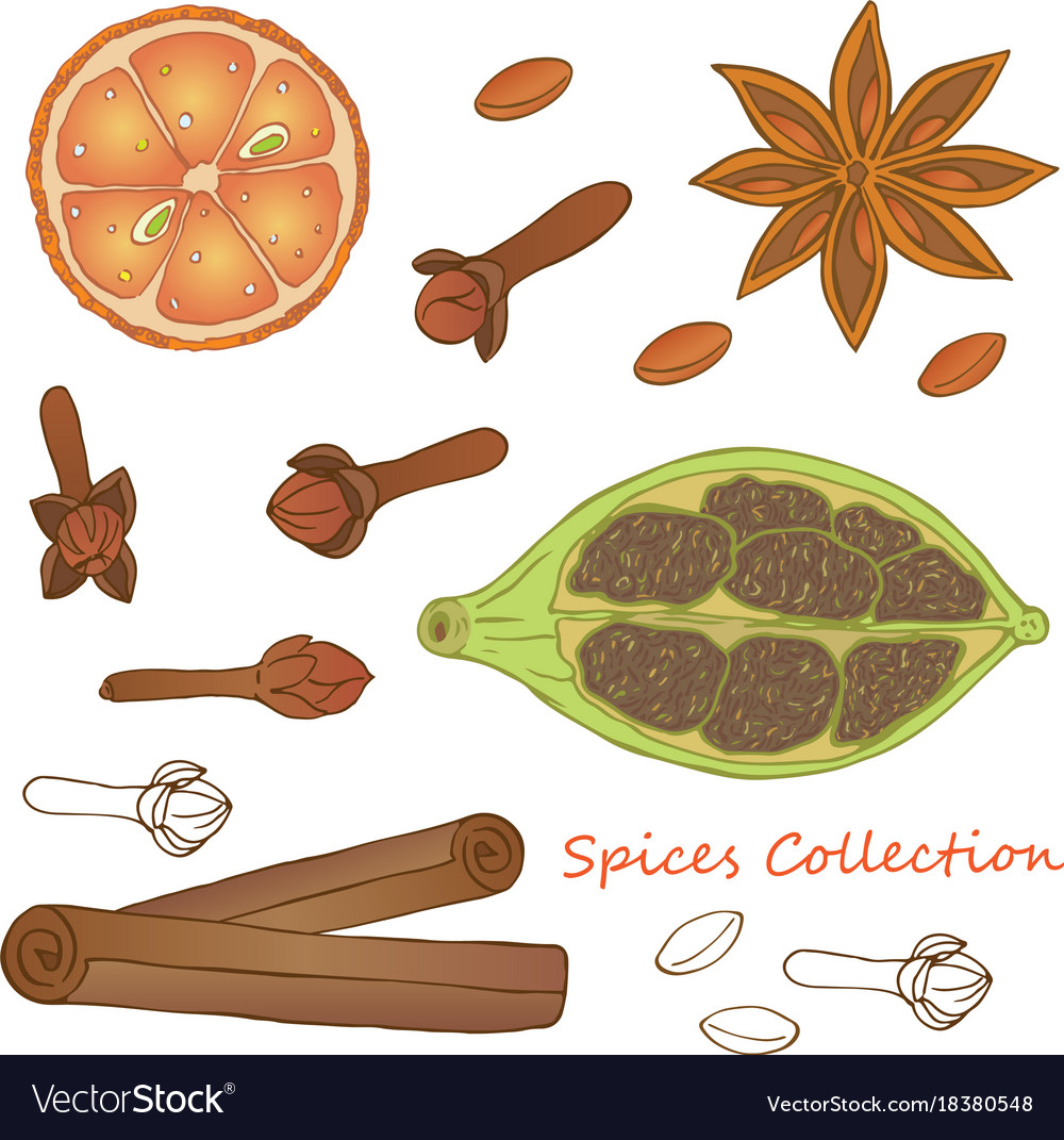 Spices collection 1
