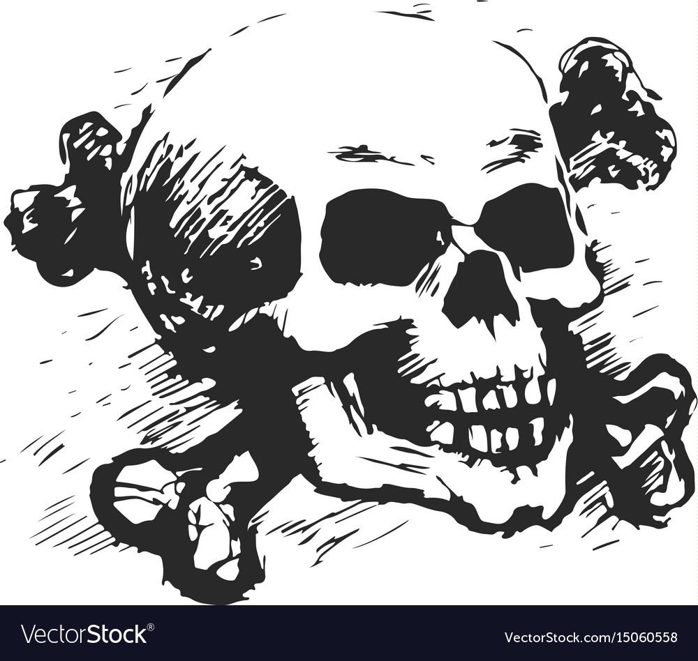 Human skull and cross bones vector image