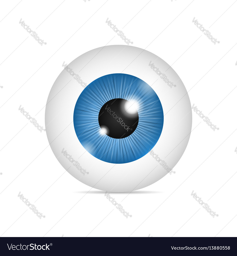 realistic human eyeball royalty free vector image rh vectorstock com free eyeball vector eyeball vector png
