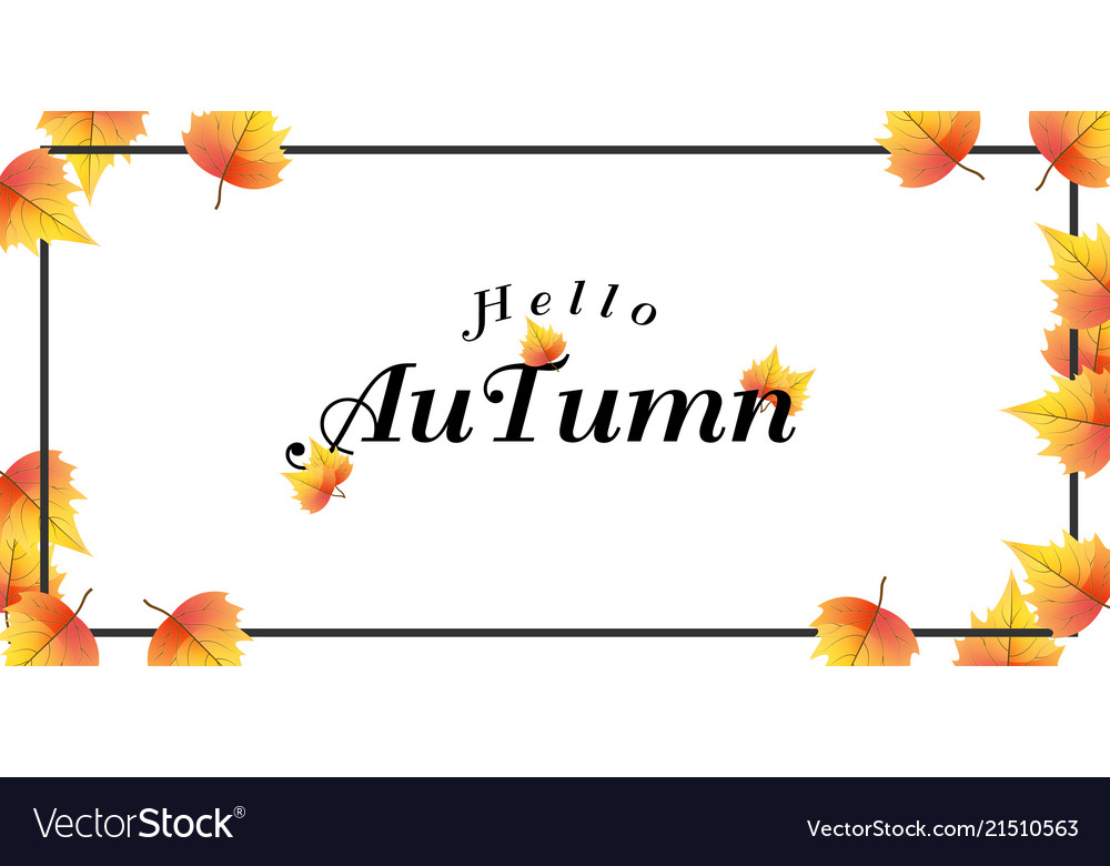 Hello autumn falling maple leaves background