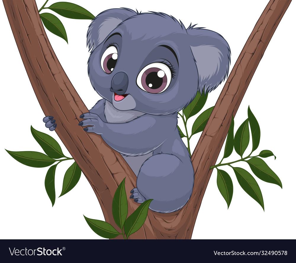 Funny little koala bear baby