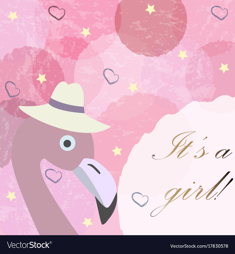 its a girl baby girl birth announcement card vector image