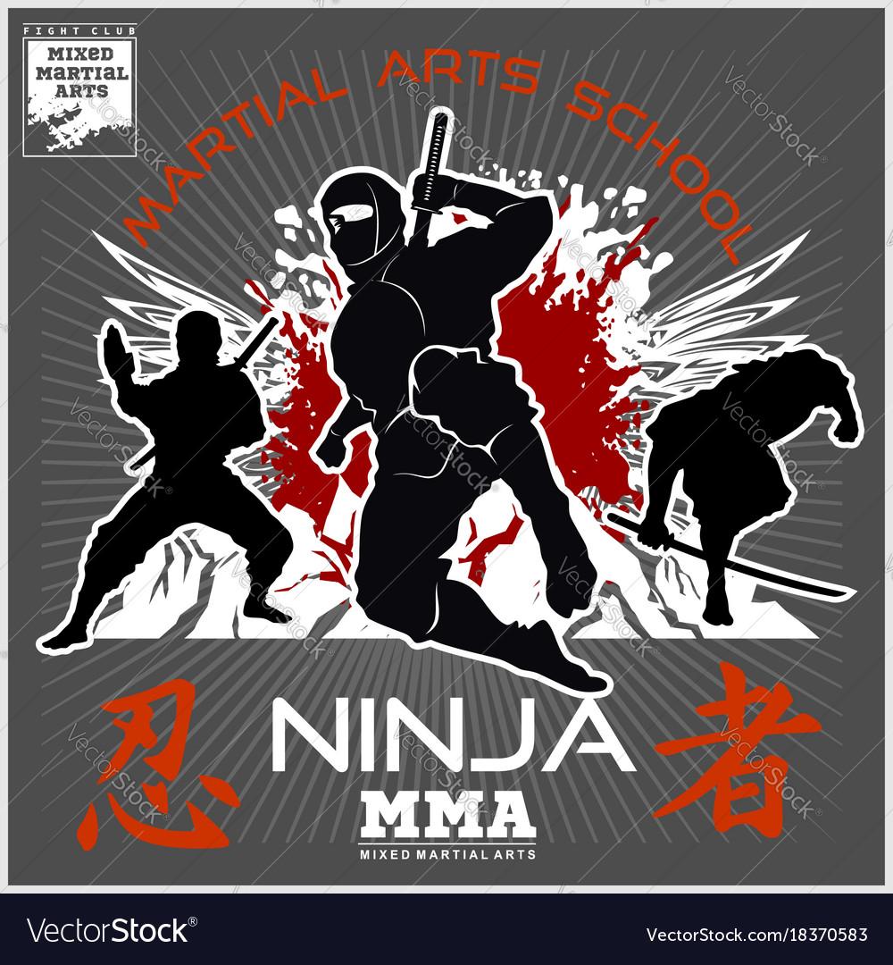 Ninja warrior fighter - mixed martial art