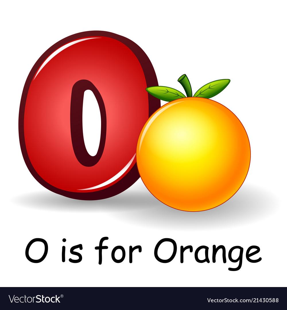 fruit alphabet o is for orange royalty free vector image