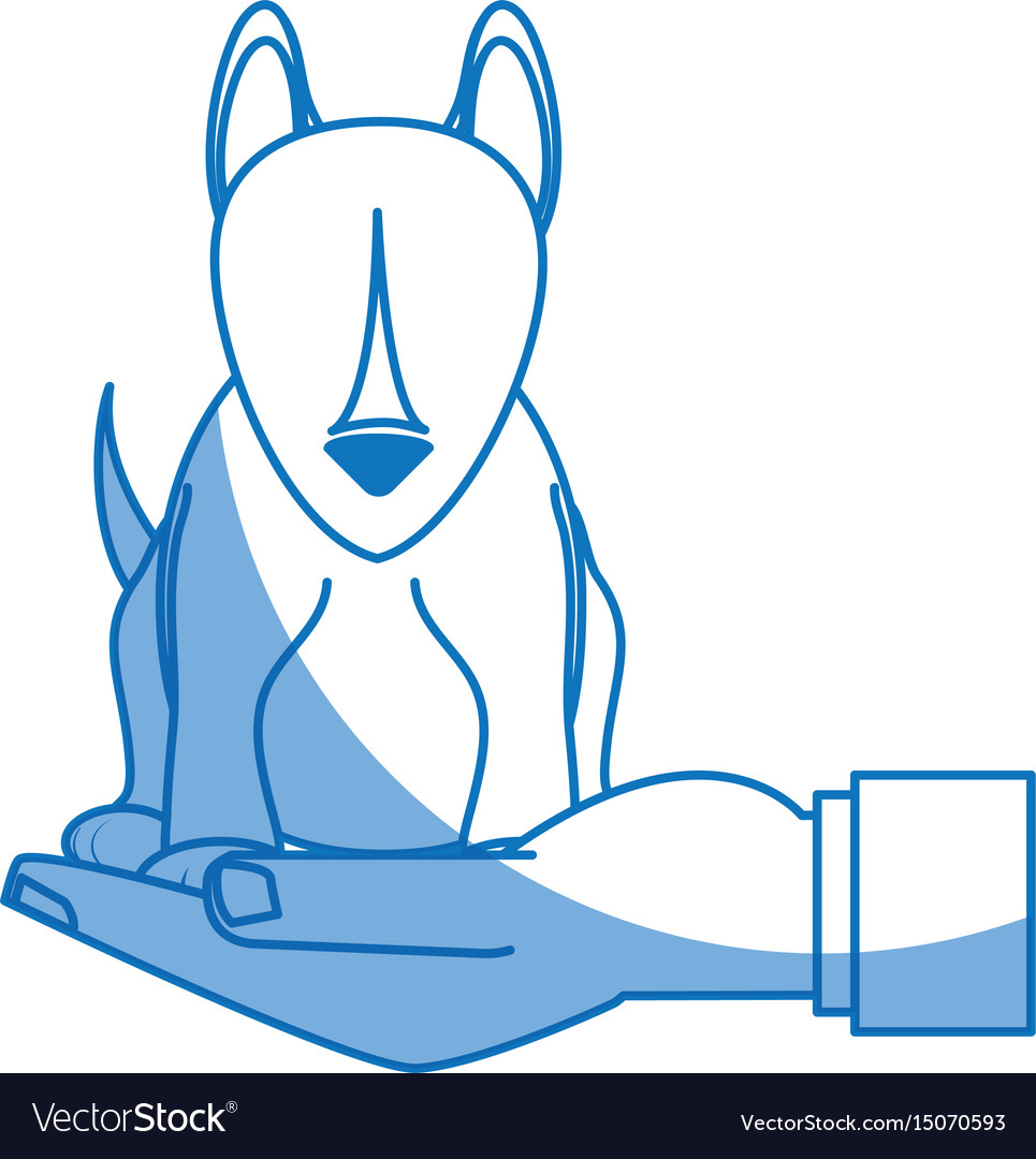 Human hand holding dog pet veterinary concept