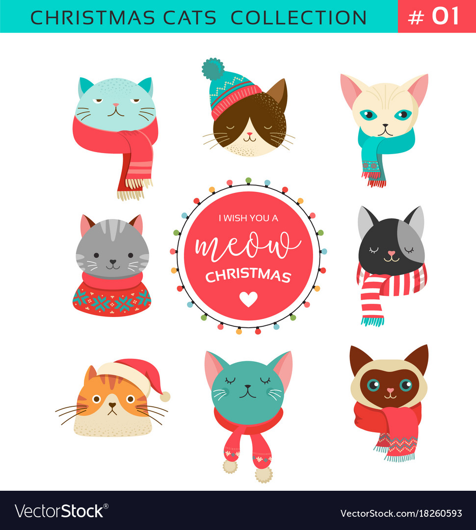 merry christmas with cute cats characters vector image - Merry Christmas Cat