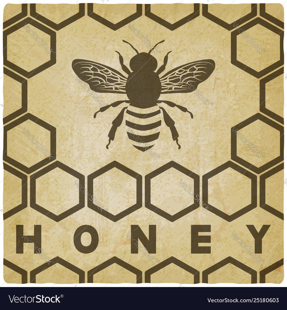 Honey bee on honeycomb vintage background