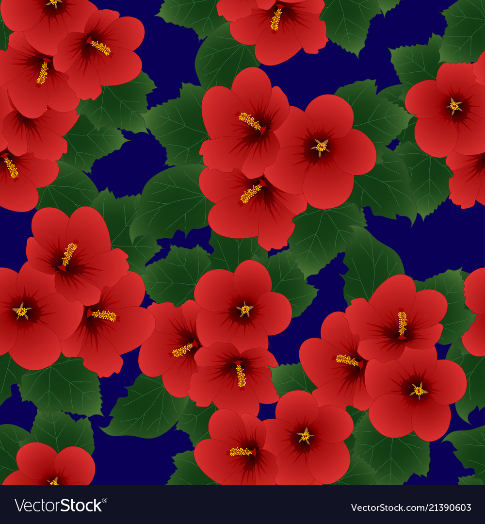 Red Hibiscus Syriacus Rose Of Sharon On Navy Vector Image